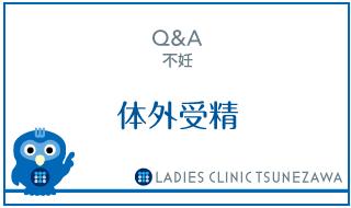 Q&A,不妊_体外受精,レディースクリニックつねざわ【福井市・福井駅東】産婦人科