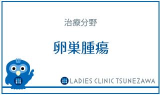 治療_卵巣腫瘍,レディースクリニックつねざわ【福井市・福井駅東】産婦人科