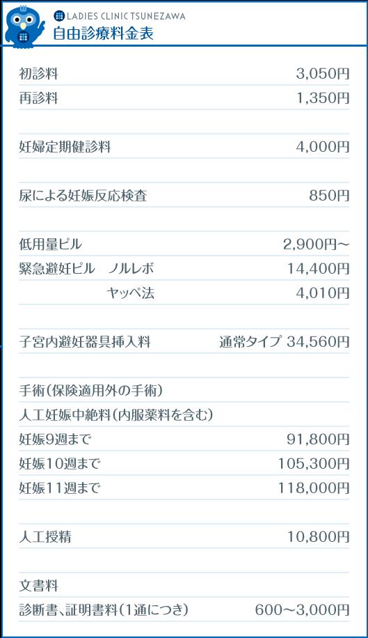 LCつねざわ_自由診療料金表,レディースクリニックつねざわ【福井市・福井駅東】産婦人科