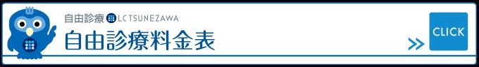 自由診療料金表,レディースクリニックつねざわ【福井市・福井駅東】産婦人科