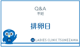 Q&A,不妊_排卵日,レディースクリニックつねざわ【福井市・福井駅東】産婦人科
