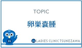 卵巣嚢腫,レディースクリニックつねざわ【福井市・福井駅東】産婦人科