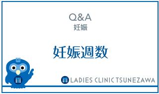 Q&A,妊娠_妊娠週数,レディースクリニックつねざわ【福井市・福井駅東】産婦人科