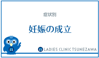 症状別_妊娠の成立,レディースクリニックつねざわ【福井市・福井駅東】産婦人科
