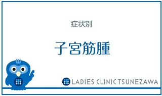 症状別_子宮筋腫,レディースクリニックつねざわ【福井市・福井駅東】産婦人科