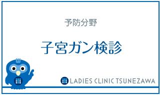 予防_子宮ガン検診,レディースクリニックつねざわ【福井市・福井駅東】産婦人科