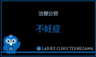 治療分野_不妊症,レディースクリニックつねざわ【福井市・福井駅東】産婦人科