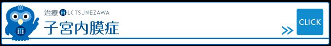 治療_子宮内膜症,レディースクリニックつねざわ【福井市・福井駅東】産婦人科